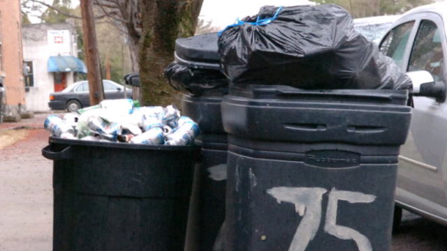 What Are The Environmental Benefits of Proper Waste Disposal?